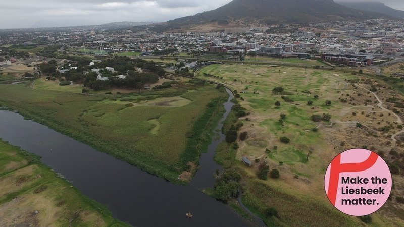 World Environment Day: Is the Liesbeek River Valley is under threat of Ecocide?